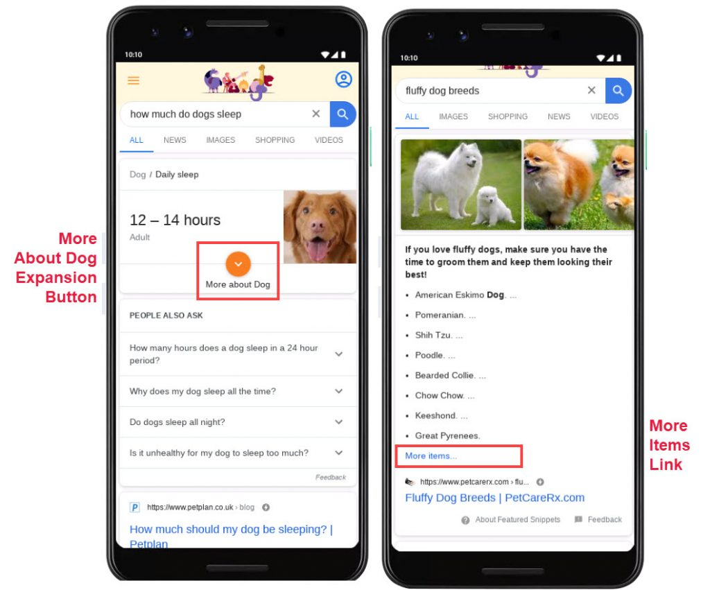 Google Featured Snippet More Expanders and More Items Link